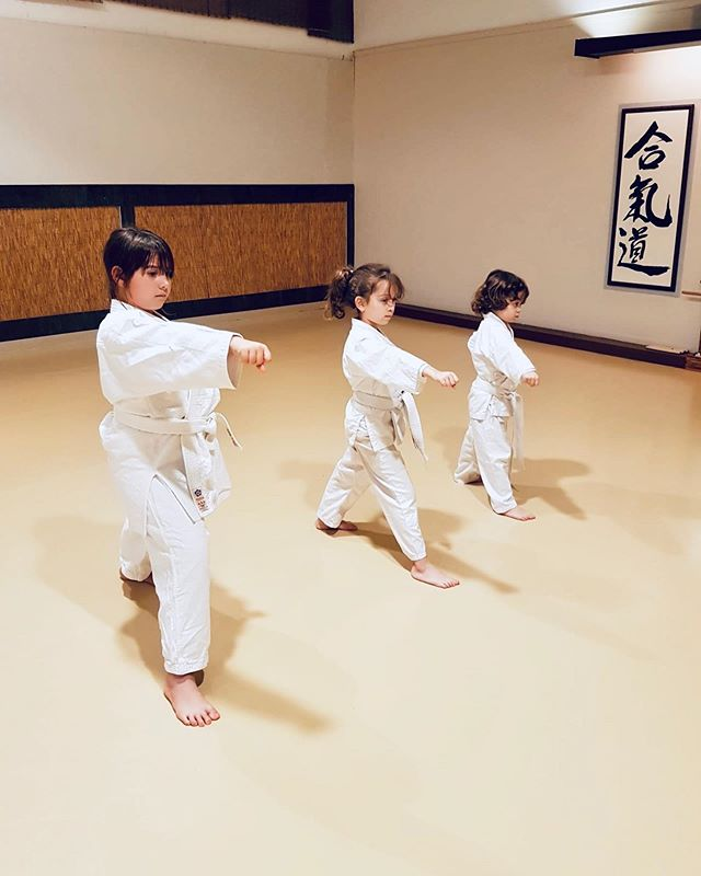 Aikido Musubi Karate classes for children
